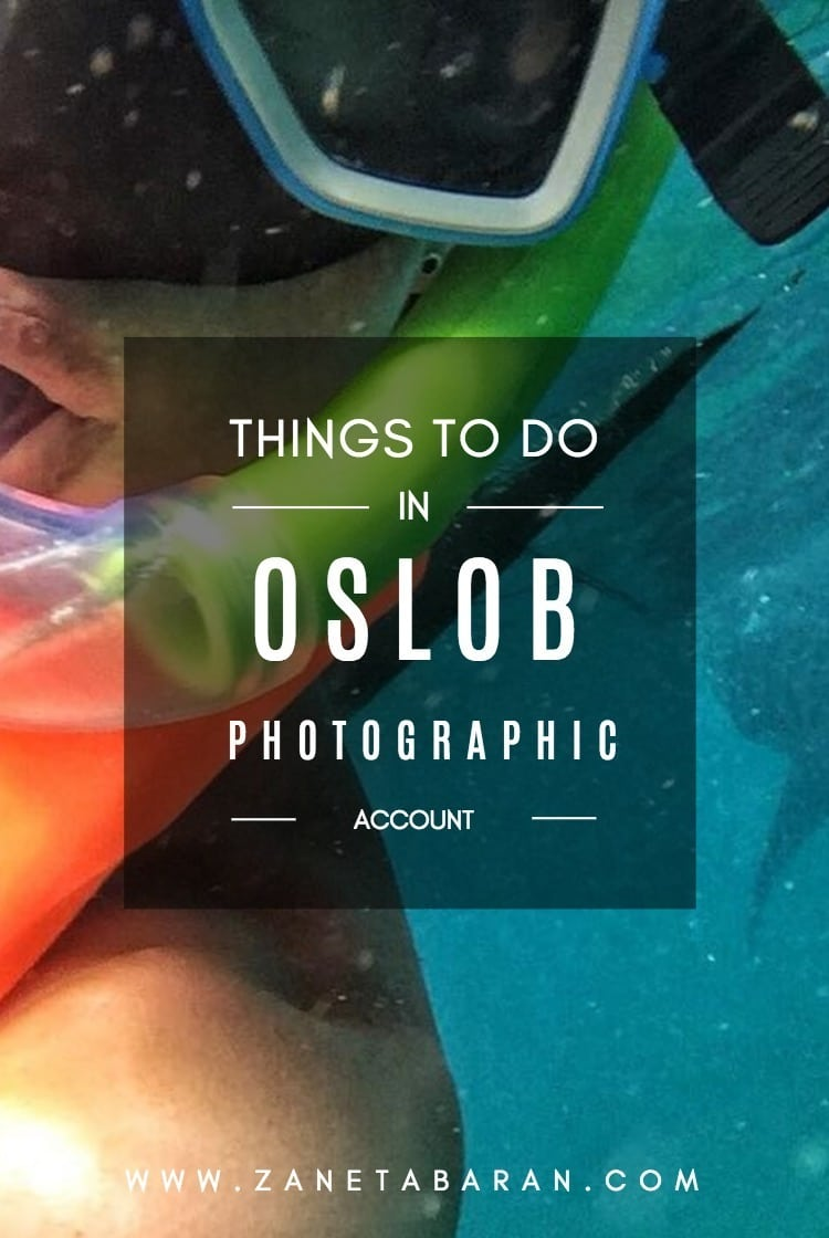 Printerest Things To Do in Oslob – Photographic Account