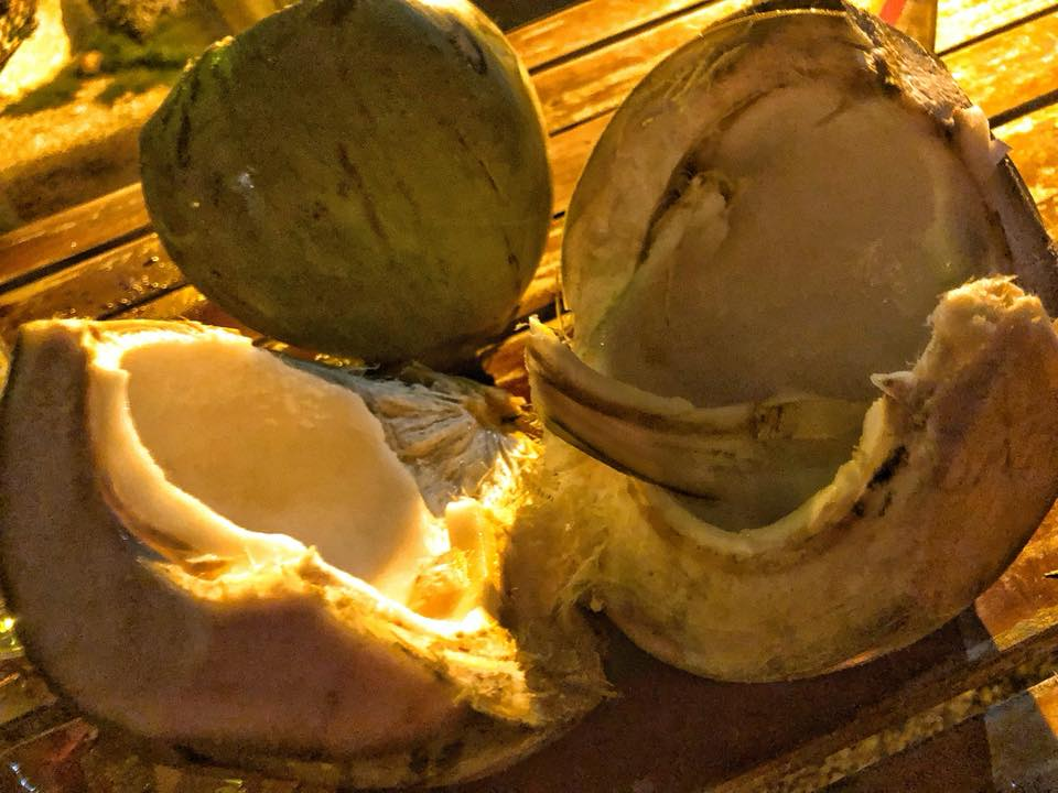 Noordze Hostel Coconut