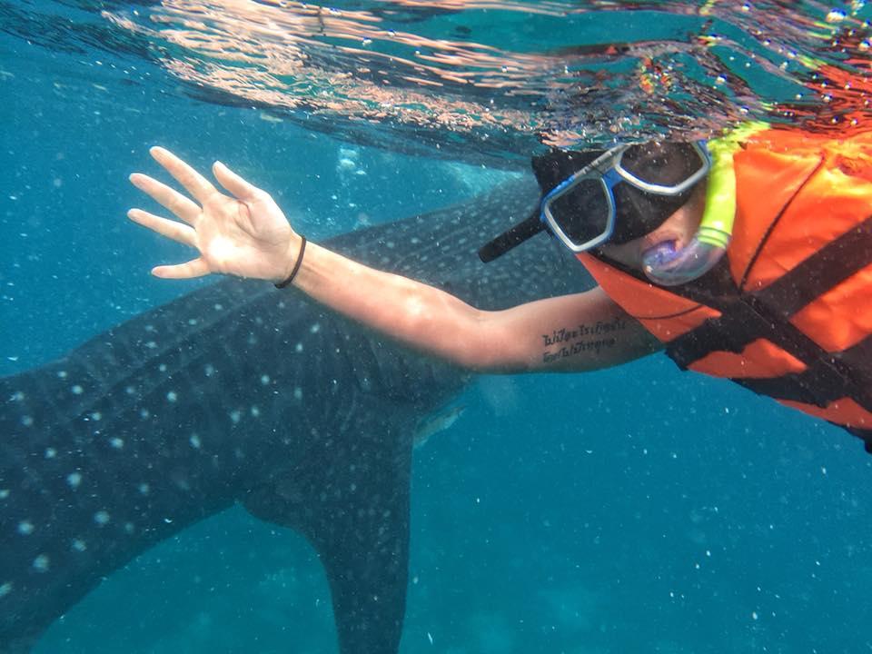 Oslob Whale Sharks Ze Selfie