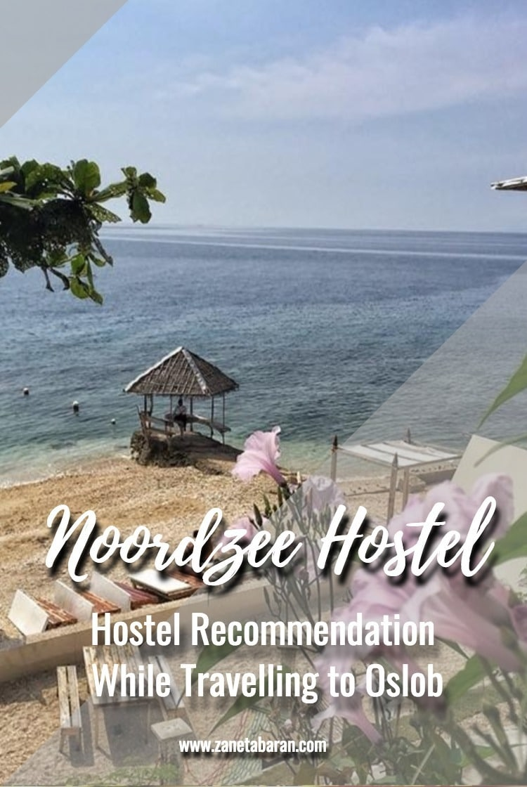 Pinterest Hostel Recommendation When Travelling to Oslob – Noordzee Hostel
