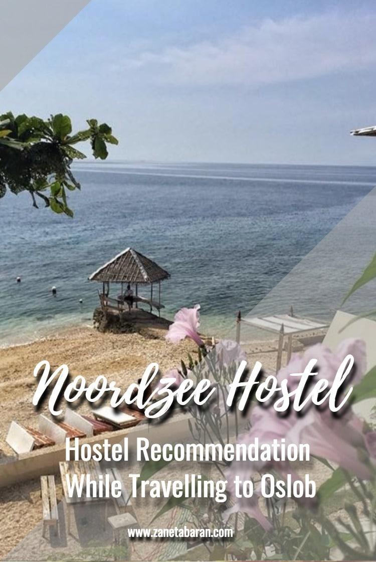 Pinterest Hostel Recommendation When Travelling to Oslob – Noordzee Hostel