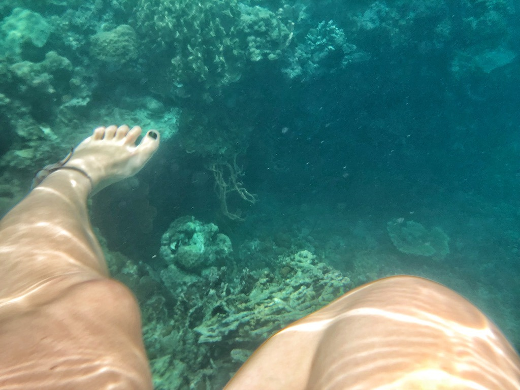 Things To Do in Coron While Raining Season – Photographic Account Japanese Ship Wreck Under Water