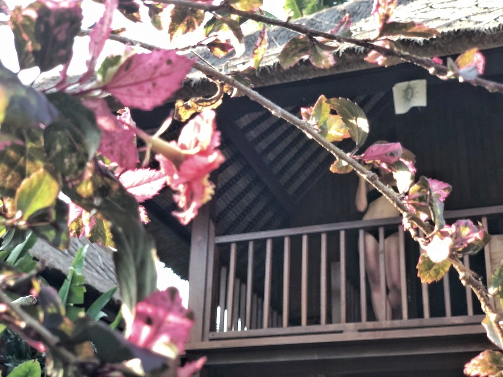 Hostel Recommendation While Travelling to Nusa Lembongan – Sukanusa Luxury Huts Flowers