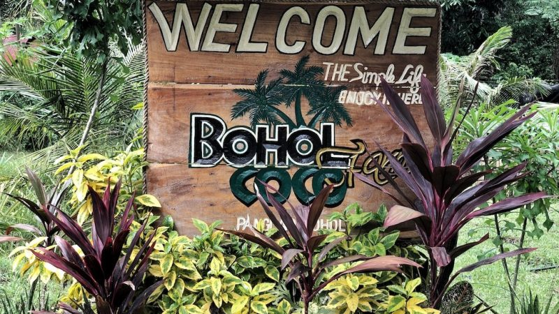 Place To Stay When Travelling To Bohol Panglao – Bohol Coco Farm