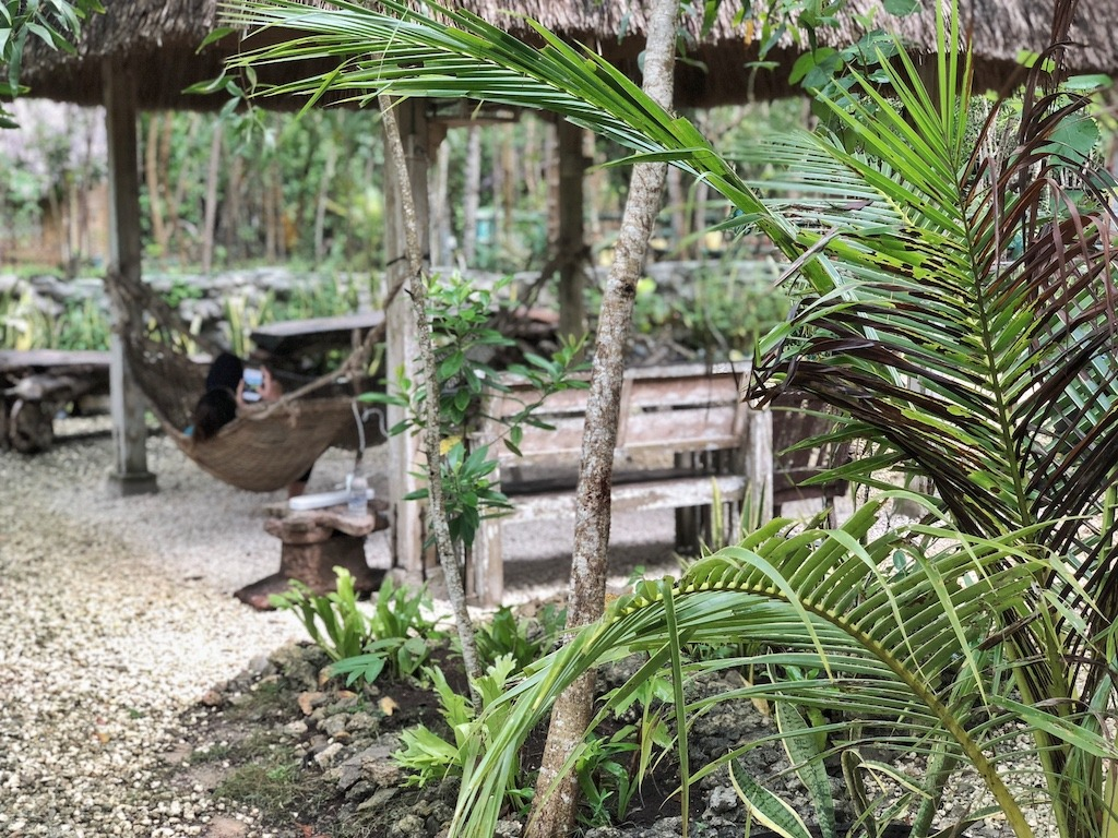 Place To Stay When Travelling To Bohol Panglao – Bohol Coco Farm Vacation