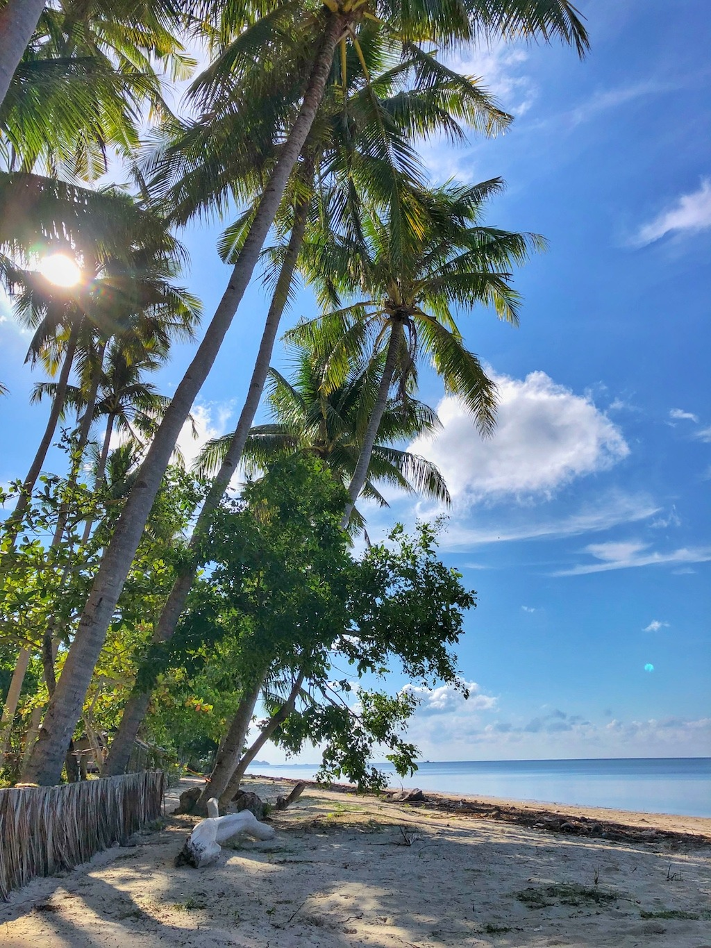 Where to stay when travelling to Siquijor – Glamping Siquijor Beach View