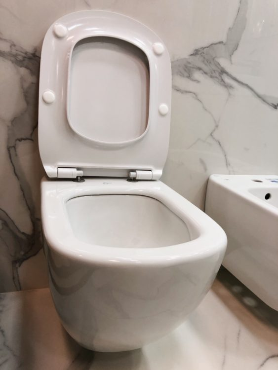 Bathroom Renovation Toilet Shop