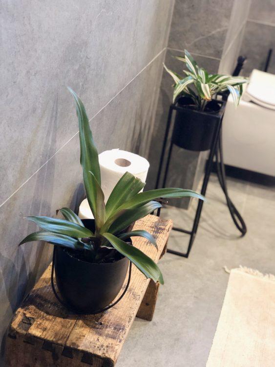 Bathroom Renovation Zielony Parapoet