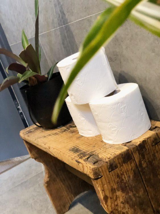 DIY Bathroom Makeover Interior Design