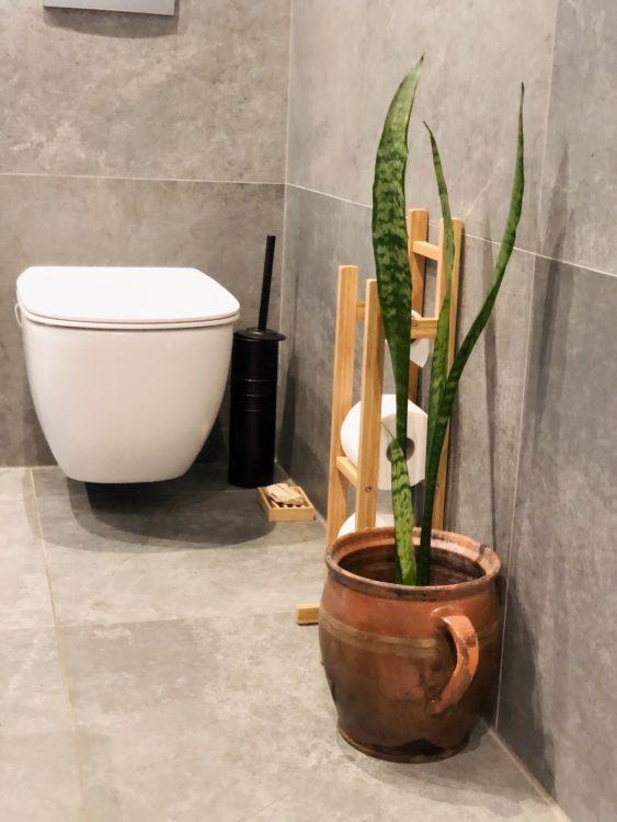 Zielony Bathroom Renovation