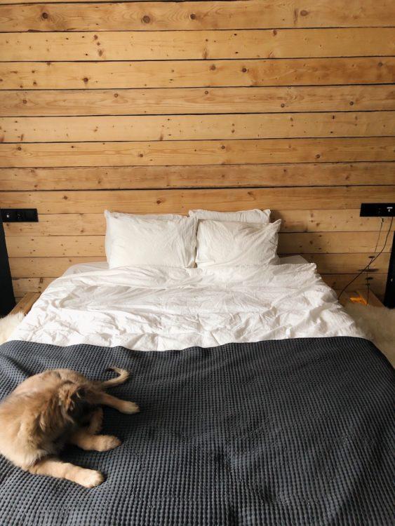 Bedroom Decor - Interior Design Bed