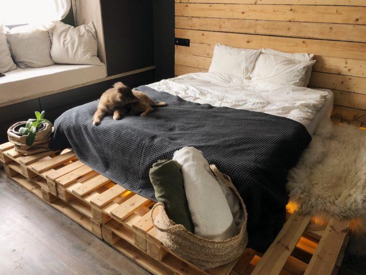 Bedroom Decor - Interior Design Dog