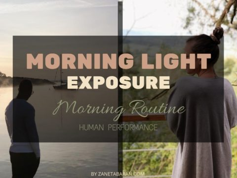 Morning Light Exposure – Morning Routine – Human Performance